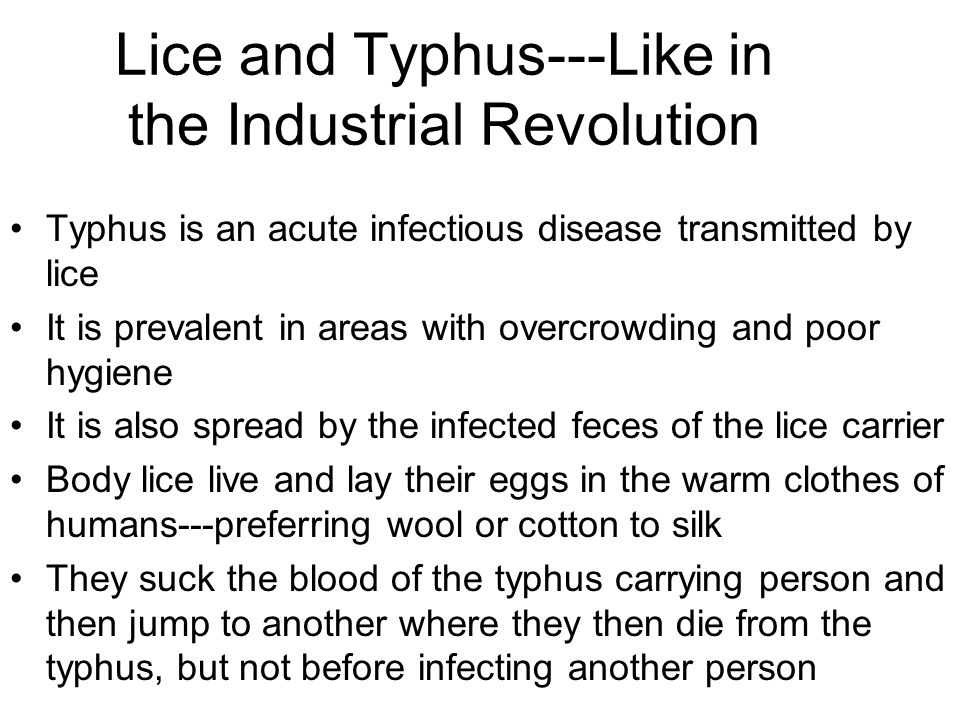 Lice and Typhus---Like in the Industrial Revolution