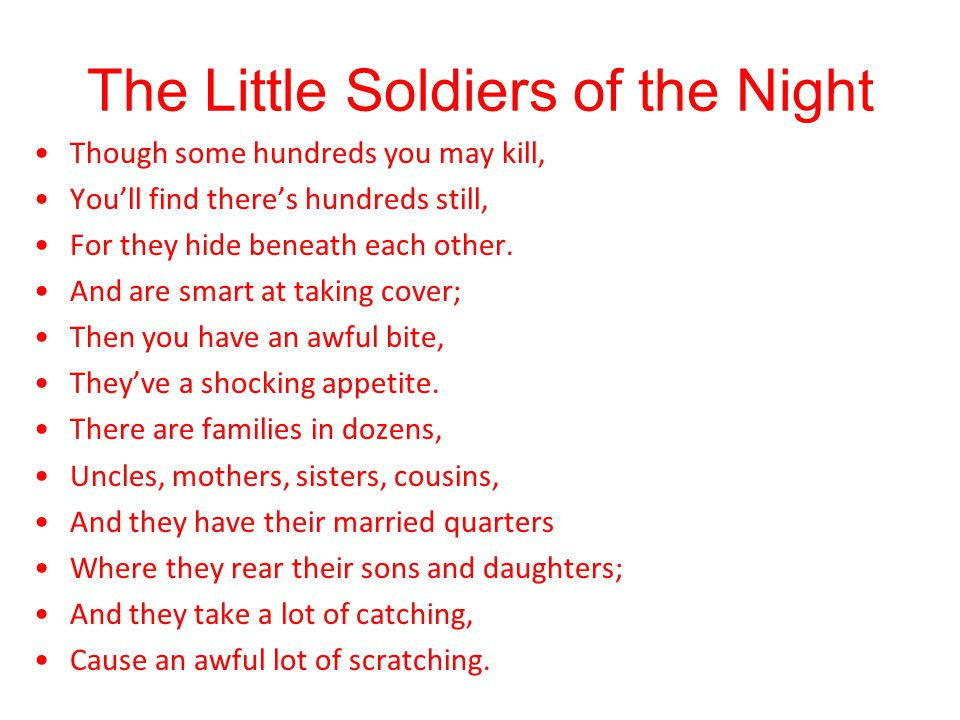 The Little Soldiers of the Night