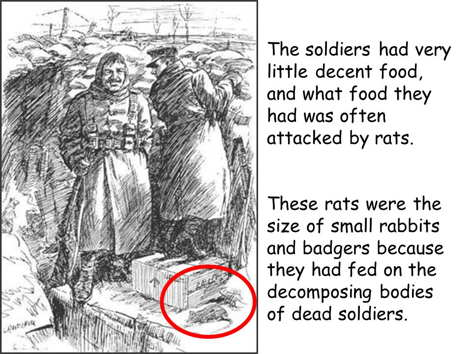 The soldiers had very little decent food, and what food they had was often attacked by rats.