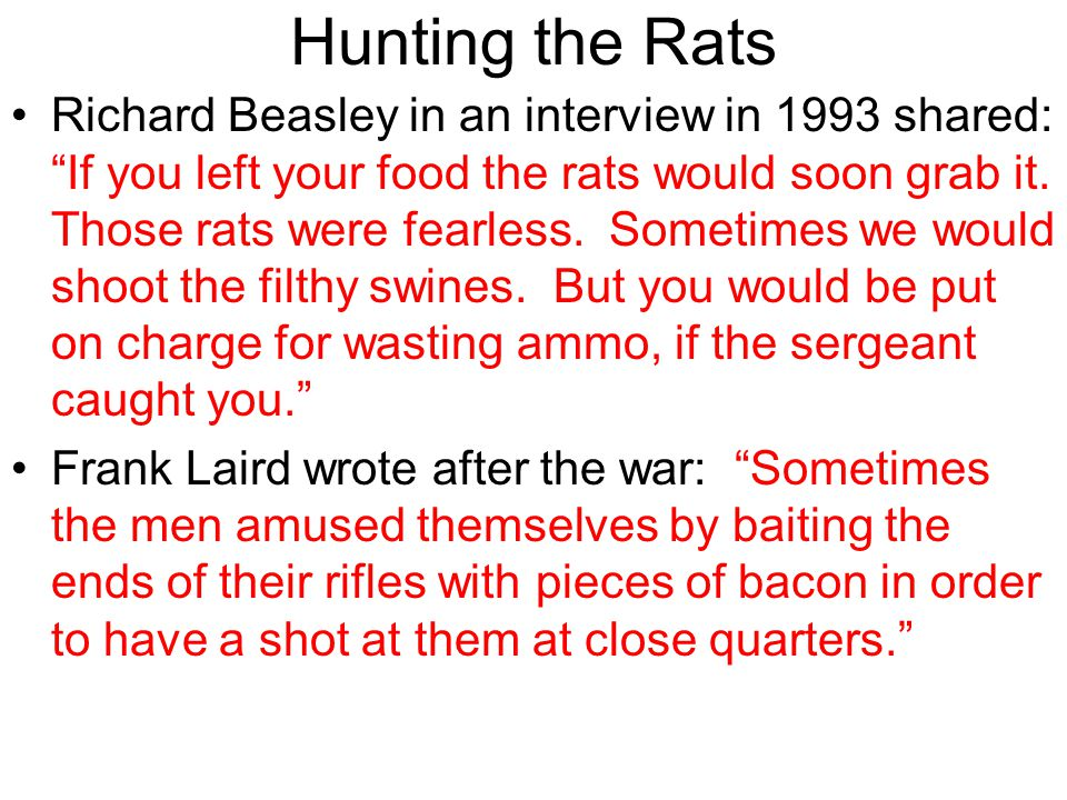 Hunting the Rats