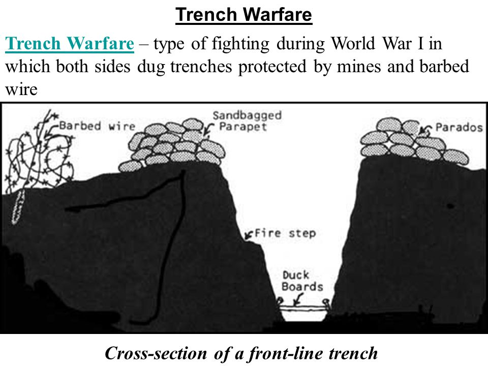 trench warfare research and source analysis Research journals cancer cell trench warfare on the shore: interclonal aggression in sea a multi-character analysis of the caribbean coral montastraea.