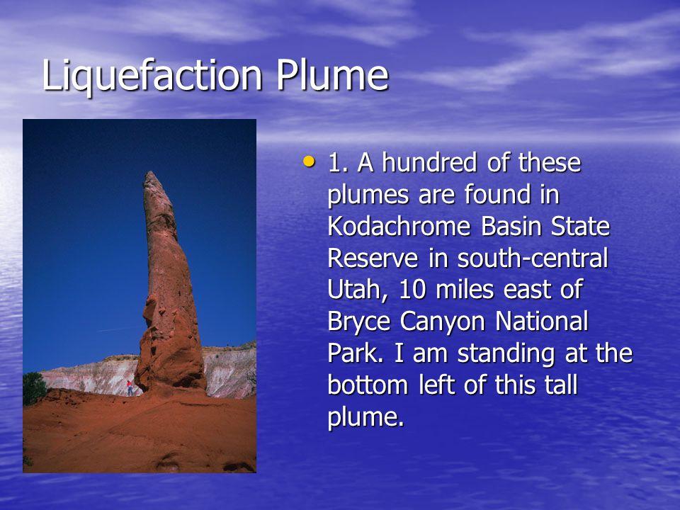 Liquefaction Plume