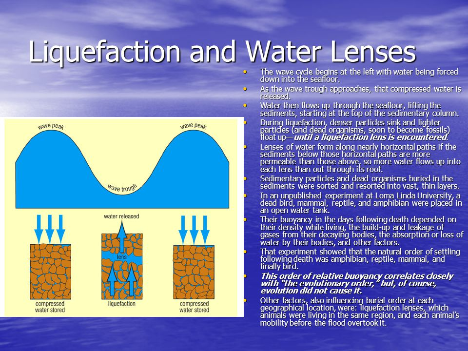 Liquefaction and Water Lenses