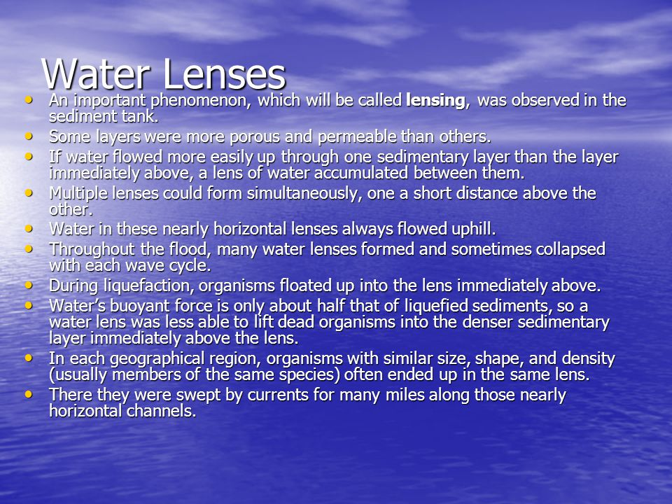 Water Lenses An important phenomenon, which will be called lensing, was observed in the sediment tank.