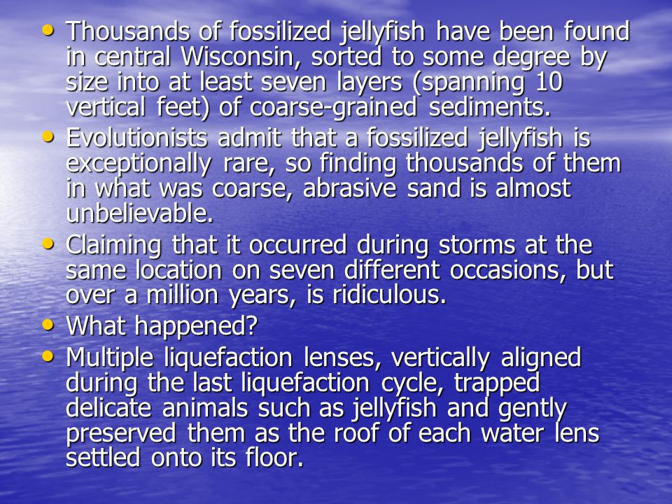 Thousands of fossilized jellyfish have been found in central Wisconsin, sorted to some degree by size into at least seven layers (spanning 10 vertical feet) of coarse-grained sediments.