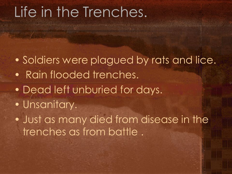 Life in the Trenches. Soldiers were plagued by rats and lice.