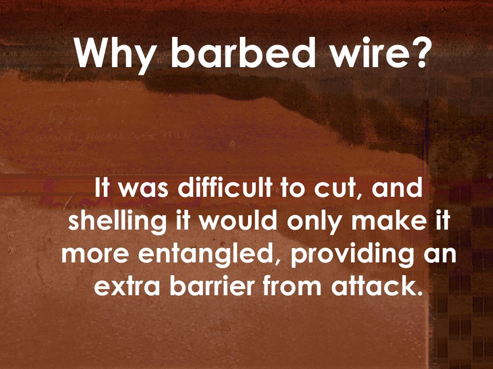 Why barbed wire.