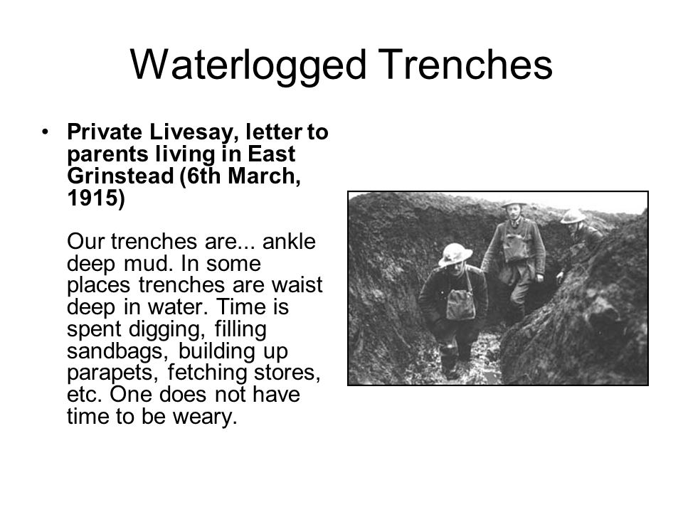 Waterlogged Trenches