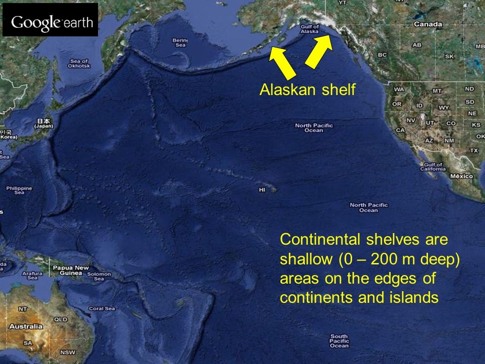 Alaskan shelf Continental shelves are shallow (0 – 200 m deep) areas on the edges of continents and islands.