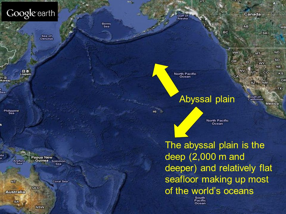 The abyssal plain is the deep (2,000 m and deeper) and relatively flat seafloor making up most of the world's oceans