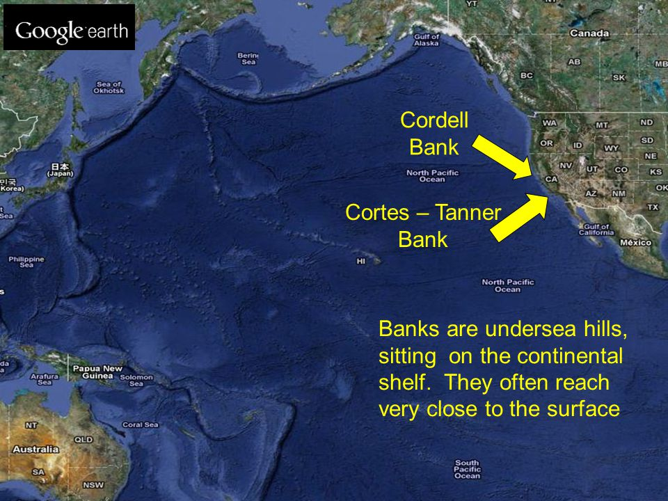 Cordell Bank Cortes – Tanner Bank