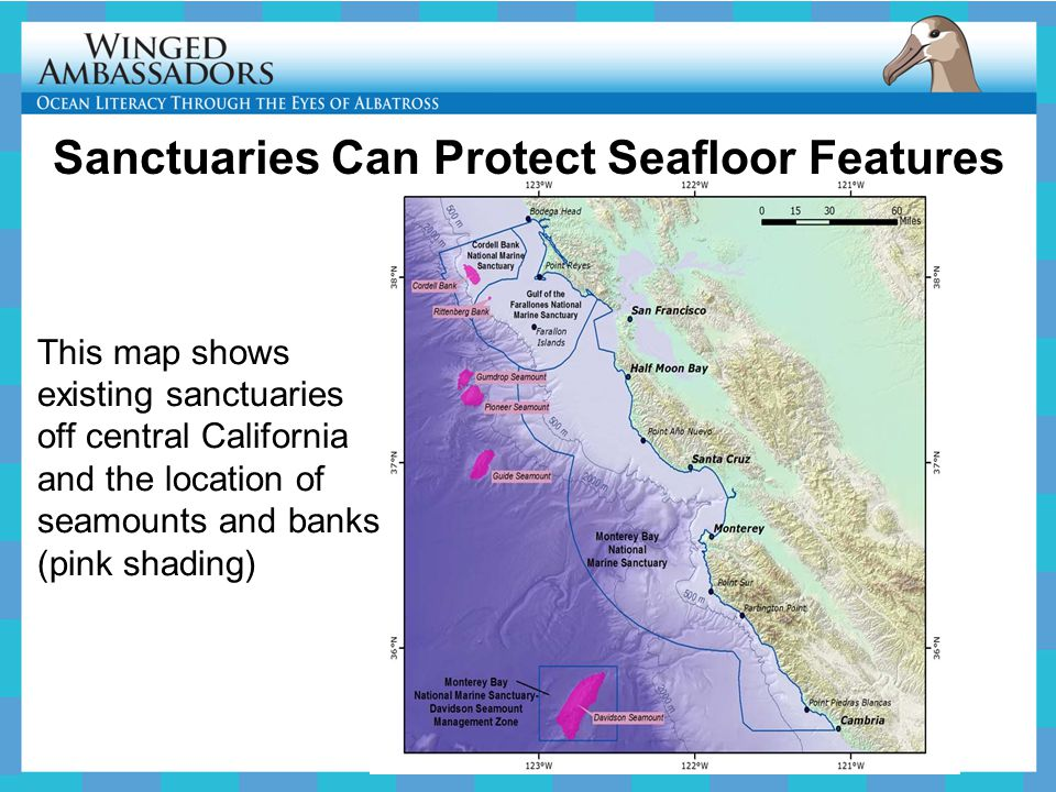 Sanctuaries Can Protect Seafloor Features