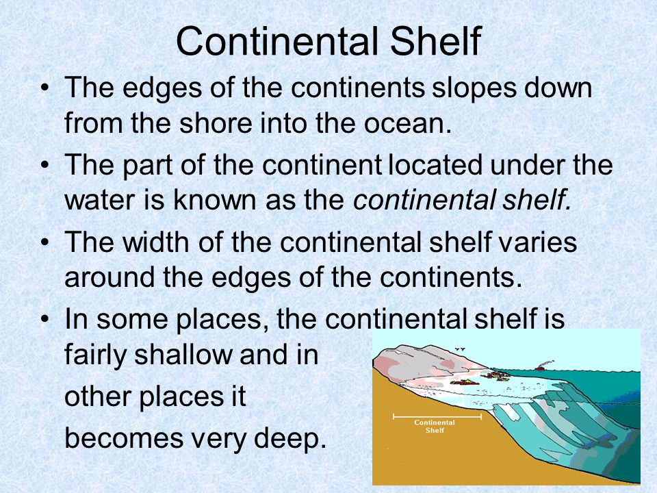 Continental Shelf The edges of the continents slopes down from the shore into the ocean.