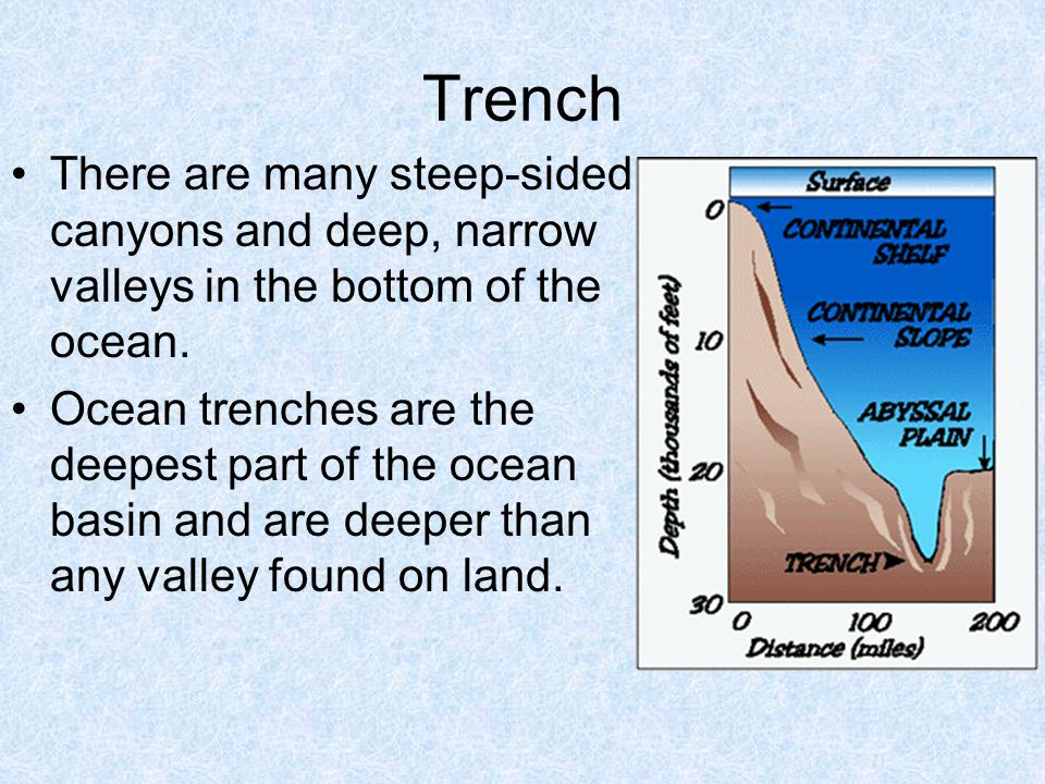 Trench There are many steep-sided canyons and deep, narrow valleys in the bottom of the ocean.