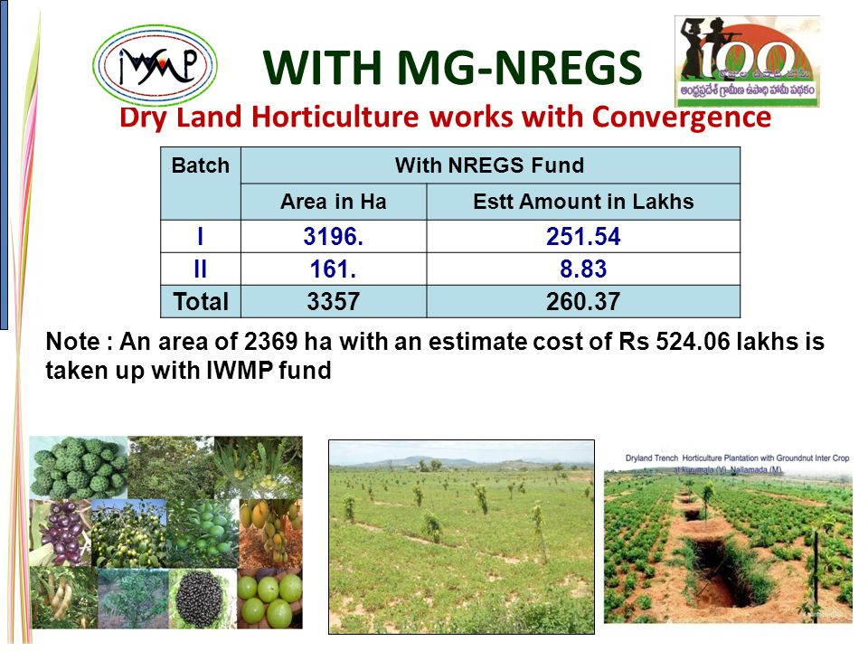 Dry Land Horticulture works with Convergence