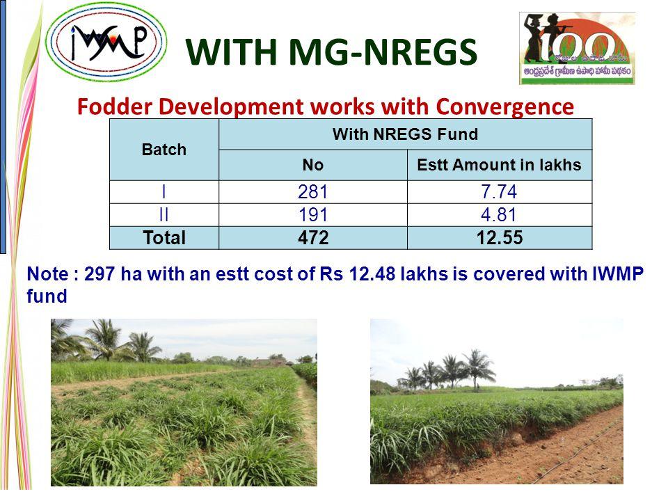 Fodder Development works with Convergence