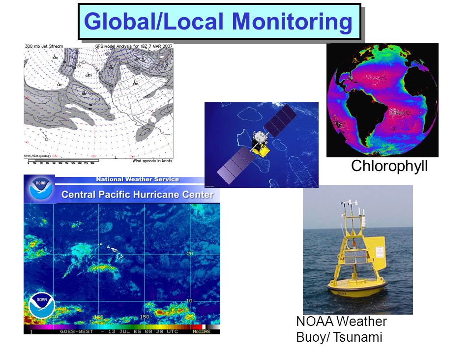 Global/Local Monitoring