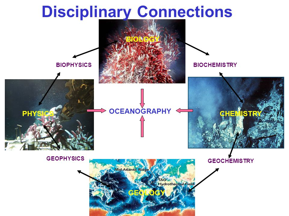 Disciplinary Connections