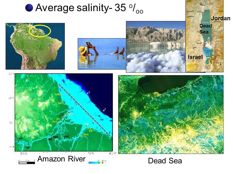 Average salinity- 35 o/oo
