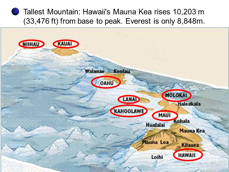 Tallest Mountain: Hawaii s Mauna Kea rises 10,203 m (33,476 ft) from base to peak.