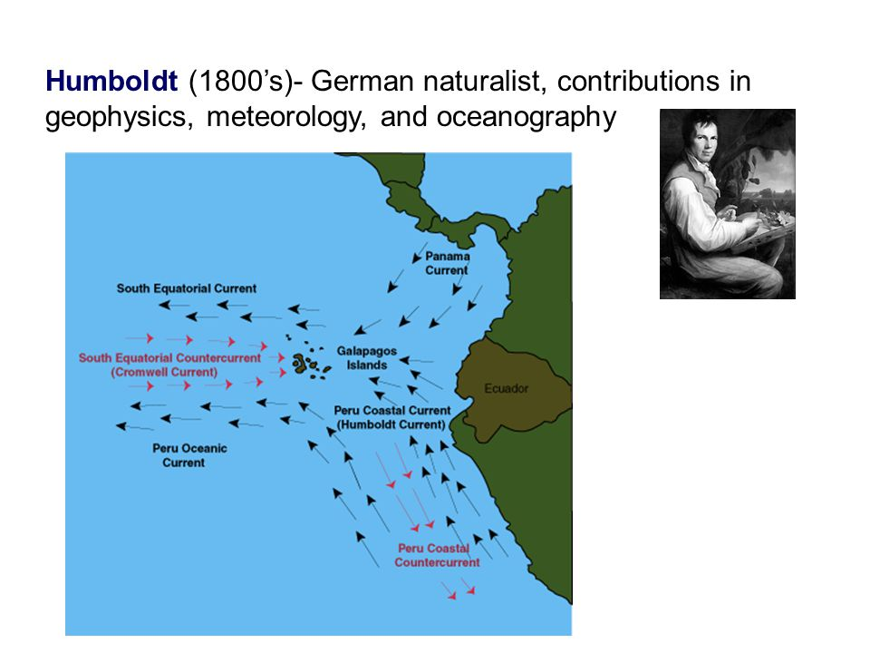 Humboldt (1800's)- German naturalist, contributions in geophysics, meteorology, and oceanography