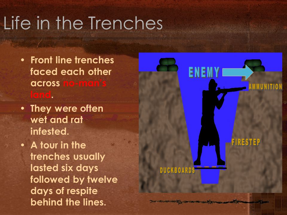 Life in the Trenches Front line trenches faced each other across no-man's land. They were often wet and rat infested.