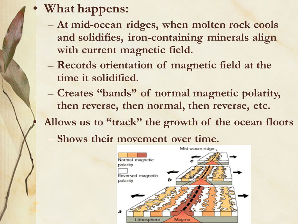 What happens: At mid-ocean ridges, when molten rock cools and solidifies, iron-containing minerals align with current magnetic field.