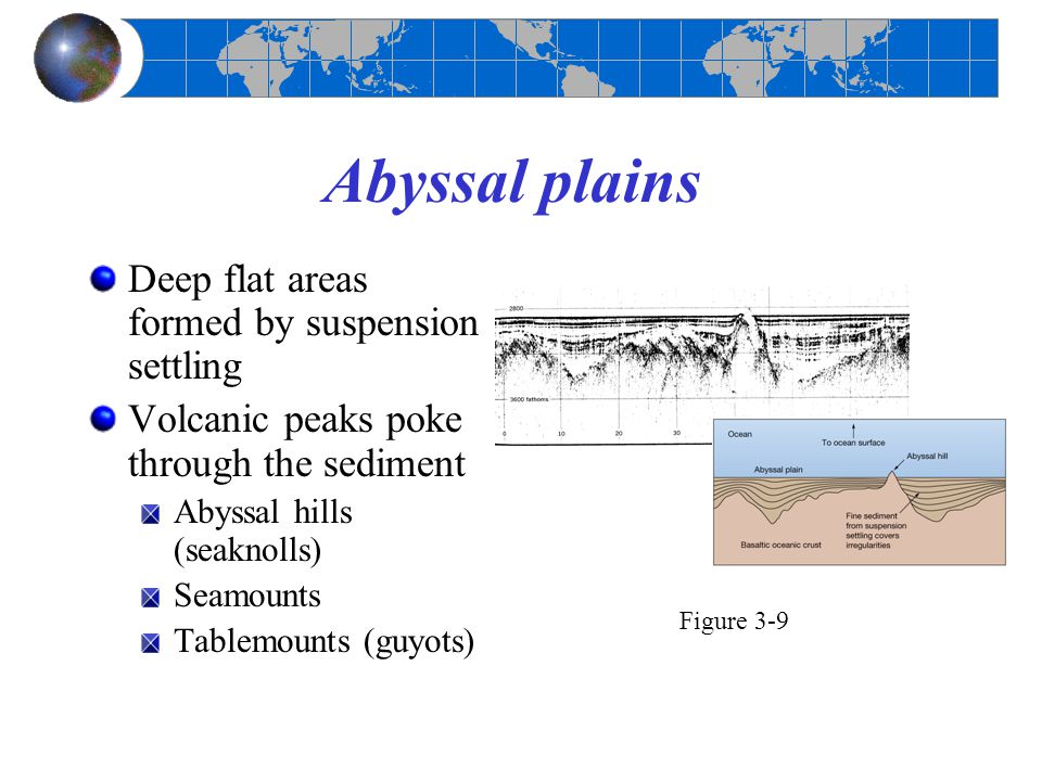 Abyssal plains Deep flat areas formed by suspension settling