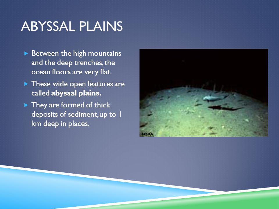 Abyssal Plains Between the high mountains and the deep trenches, the ocean floors are very flat.