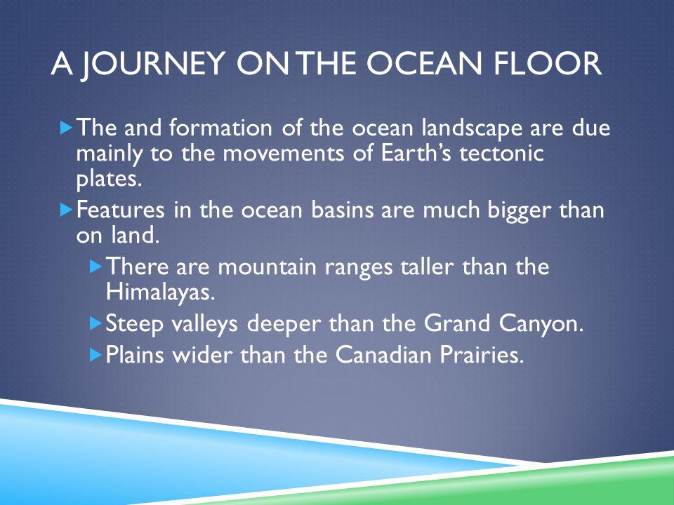 A Journey on the ocean floor