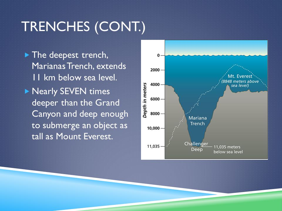 Trenches (cont.) The deepest trench, Marianas Trench, extends 11 km below sea level.