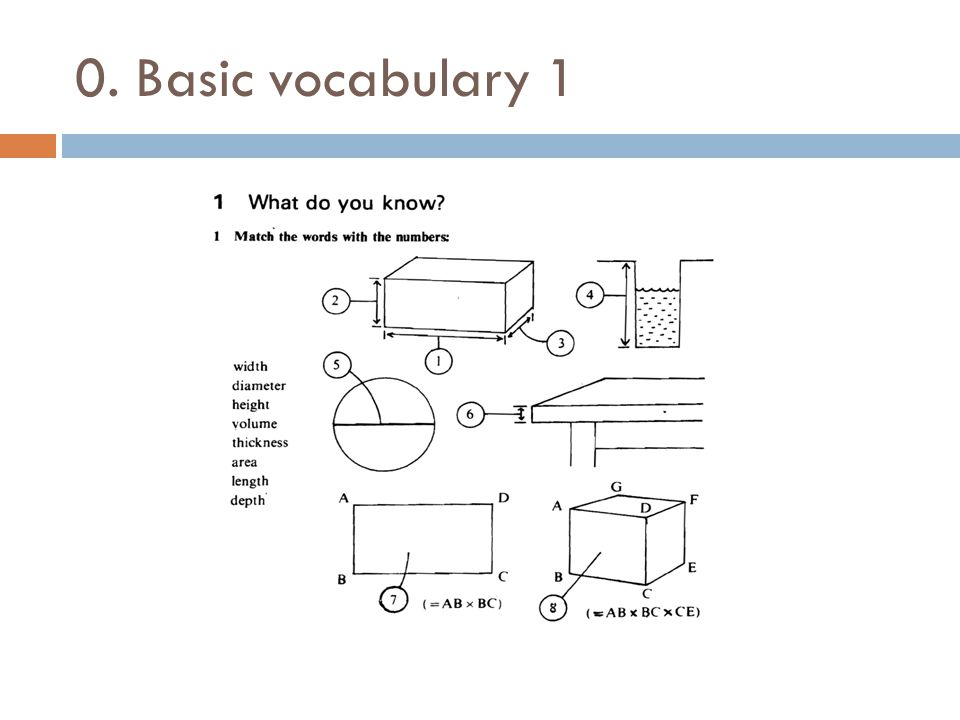 0. Basic vocabulary 1