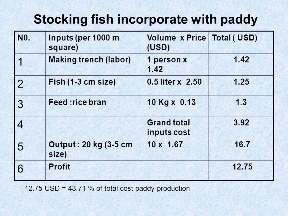 Stocking fish incorporate with paddy