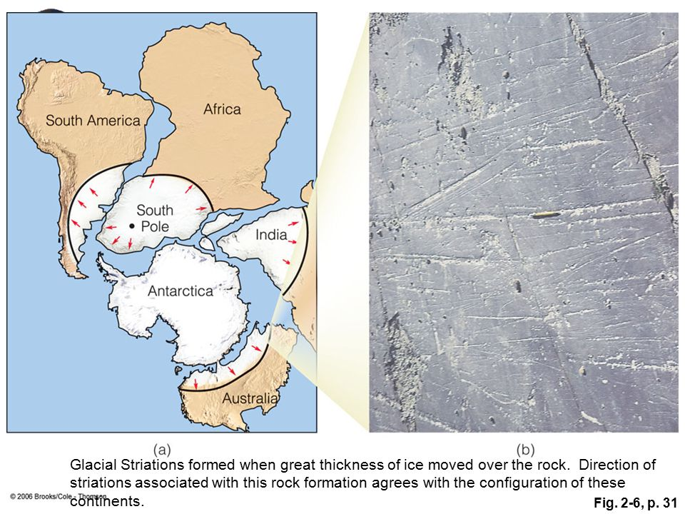 Figure 2.6: (a) If the Gondwana continents are brought together so that South Africa is located at the South Pole, then the glacial movements indicated by the striations make sense. In this situation, the glacier, located in a polar climate, moved radially outward from a thick central area toward its periphery. (b) Permian-aged glacial striations in bedrock exposed at Hallet's Cove, Australia, indicate the direction of glacial movement more than 200 million years ago.