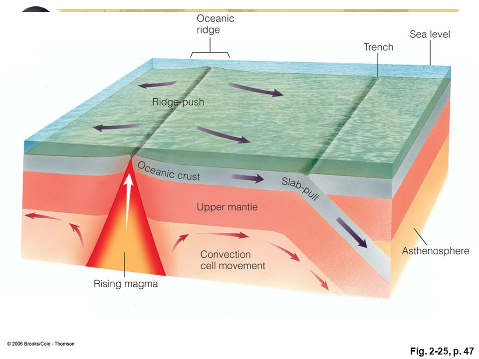 Figure 2.25: Plate movement is thought to be aided by ridge-push or slab–pull mechanisms. In ridge-push, the intrusion of magma into a spreading ridge provides an additional force that pushes the plates apart. In slab-pull, the edge of the colder and denser subducting plate descends into the interior and pulls the rest of the plate downward.