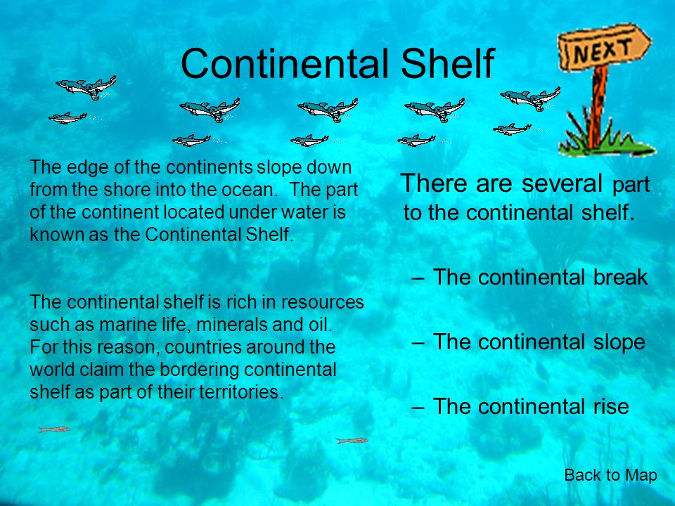 Continental Shelf There are several part to the continental shelf.