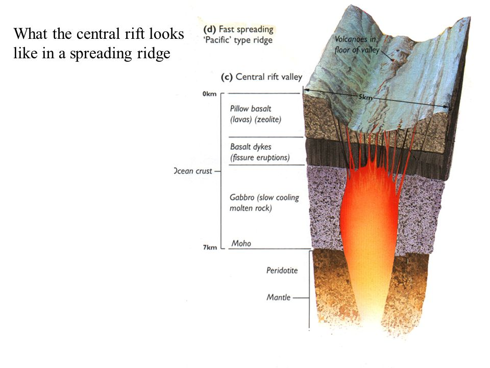 What the central rift looks like in a spreading ridge