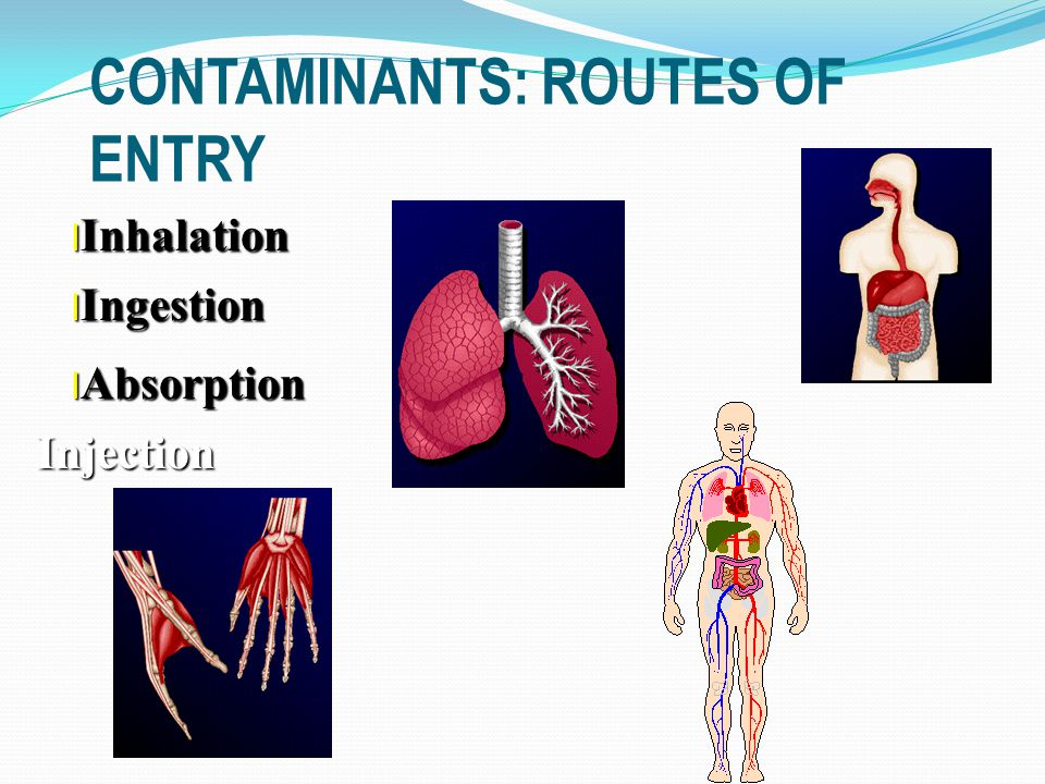 CONTAMINANTS: ROUTES OF ENTRY