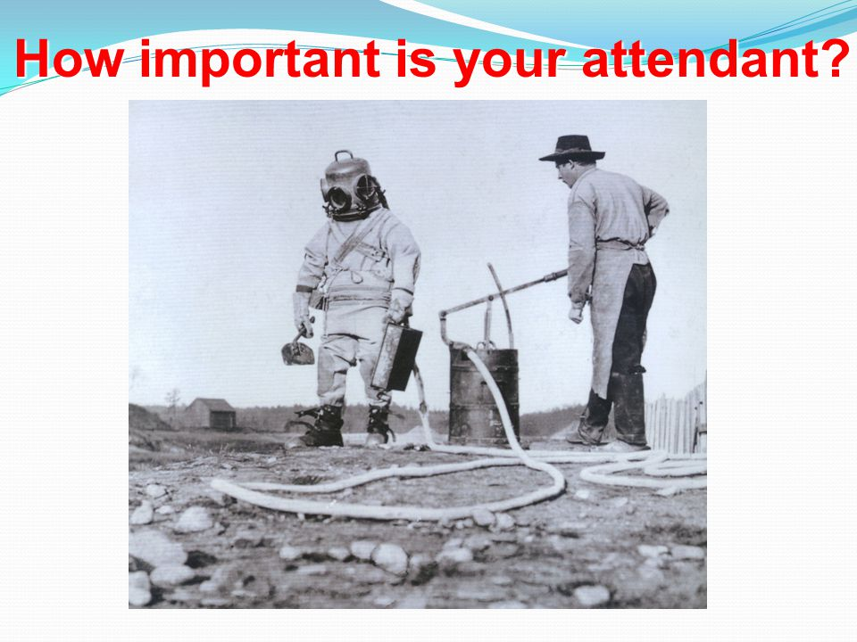 How important is your attendant