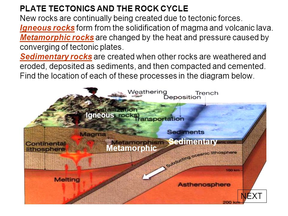 PLATE TECTONICS AND THE ROCK CYCLE New rocks are continually being created due to tectonic forces. Igneous rocks form from the solidification of magma and volcanic lava. Metamorphic rocks are changed by the heat and pressure caused by converging of tectonic plates. Sedimentary rocks are created when other rocks are weathered and eroded, deposited as sediments, and then compacted and cemented. Find the location of each of these processes in the diagram below.