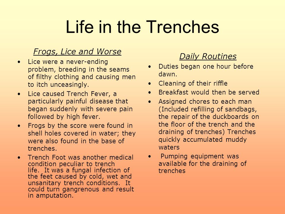 Life in the Trenches Frogs, Lice and Worse Daily Routines