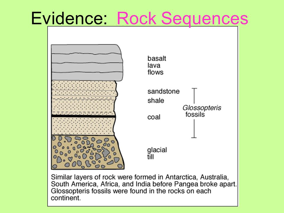 Evidence: Rock Sequences