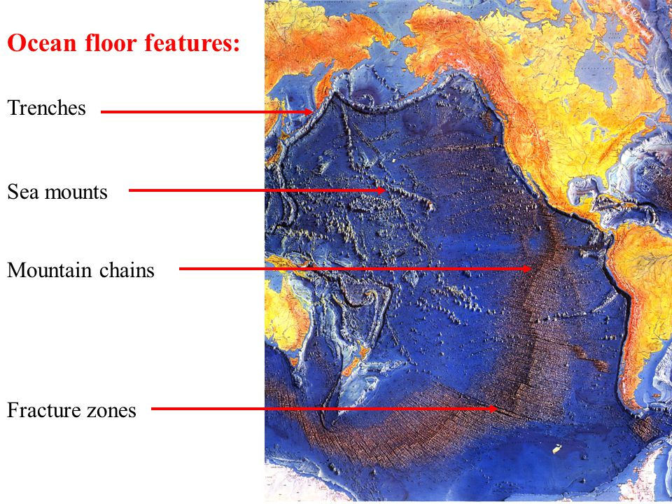 Ocean floor features: Trenches Sea mounts Mountain chains