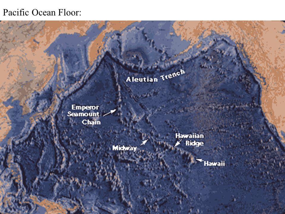 Pacific Ocean Floor: