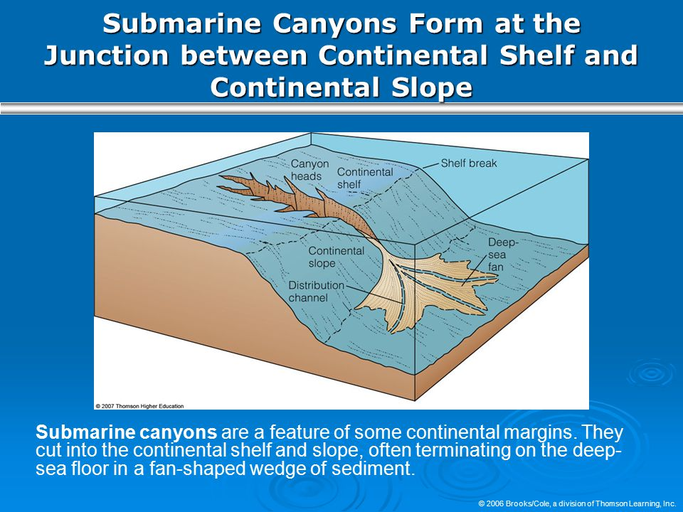 Submarine Canyons Form at the Junction between Continental Shelf and Continental Slope