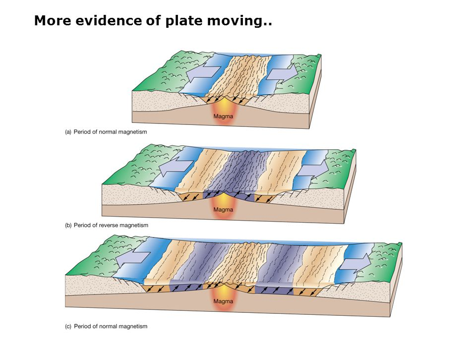 More evidence of plate moving..