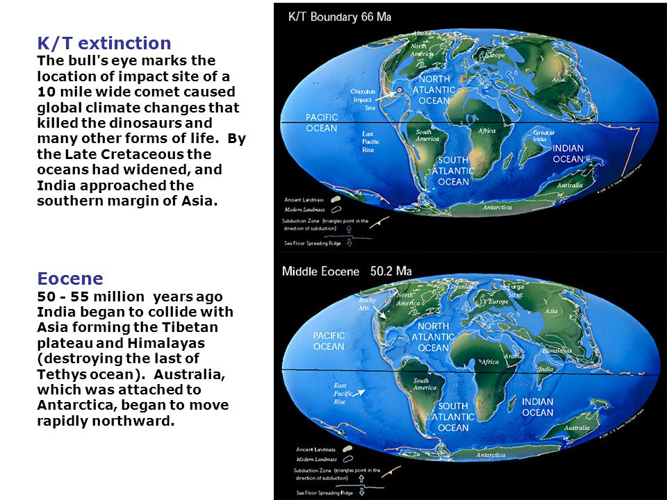 K/T extinction The bull s eye marks the location of impact site of a 10 mile wide comet caused global climate changes that killed the dinosaurs and many other forms of life. By the Late Cretaceous the oceans had widened, and India approached the southern margin of Asia.