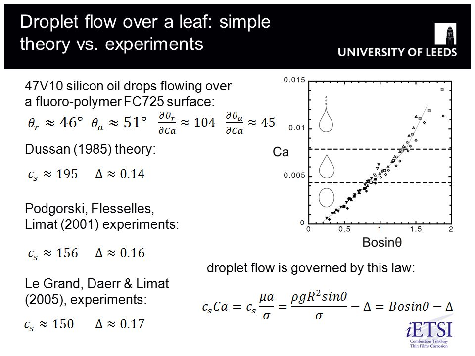 Droplet flow over a leaf: simple theory vs. experiments