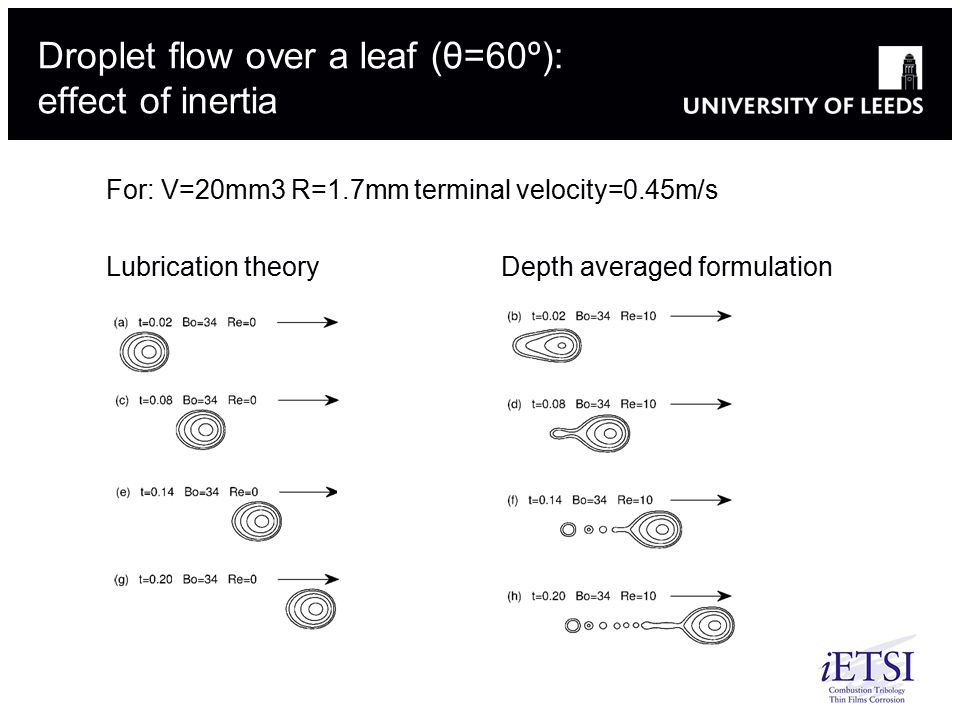 Droplet flow over a leaf (θ=60º): effect of inertia