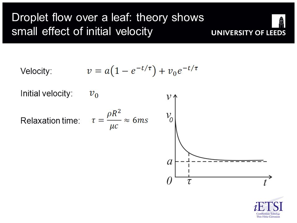 Droplet flow over a leaf: theory shows small effect of initial velocity